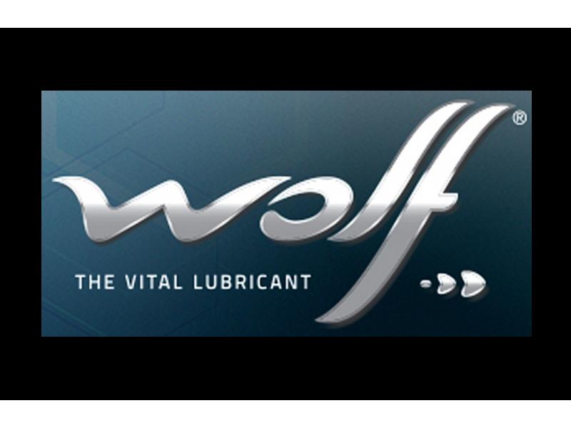Як корпорації Wolf Oil вдається успішно розвиватися в умовах конкурентного ринку